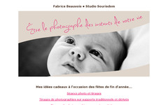 Newsletter de Fabrice Beauvois • Studio Sourisdom du 17/12/2013