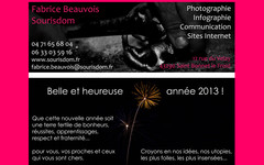 Newsletter de Fabrice Beauvois • Studio Sourisdom du 02/01/2013